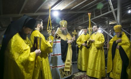 Митрополит Меркурий: «Для христианина новый год – это не буйство красок, но время сосредоточенности в молитве»