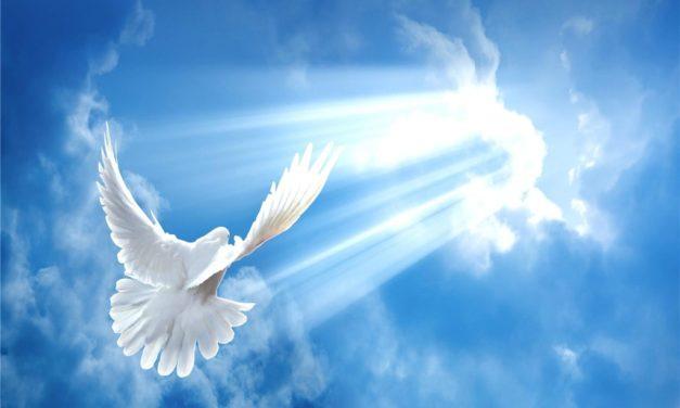 О небывалой христианской свободе
