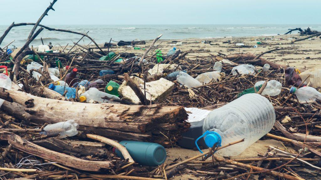 море пластик