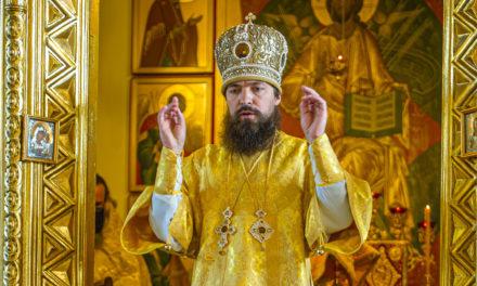 Артемий, епископ Таганрогский, викарий Ростовской епархии
